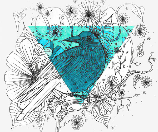 Hand-drawn bird illustration