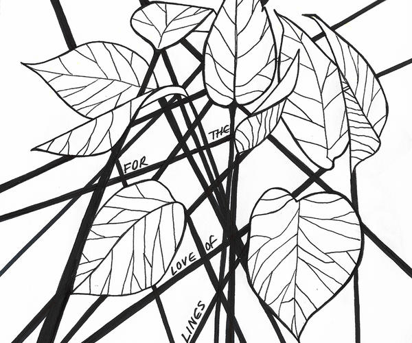 Hand-drawn leaf illustration