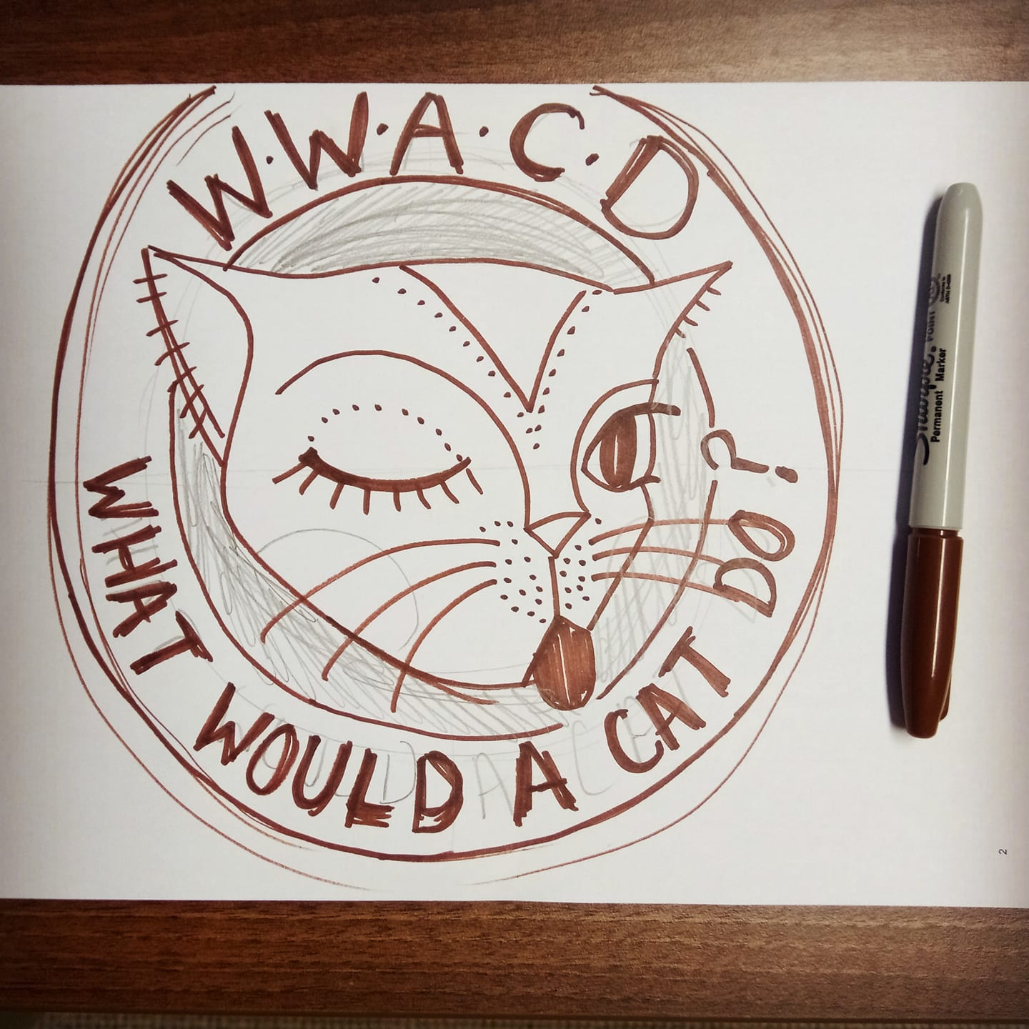 what would a cat do sketch